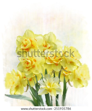 Digital Painting Of Yellow Daffodil Flowers  - stock photo