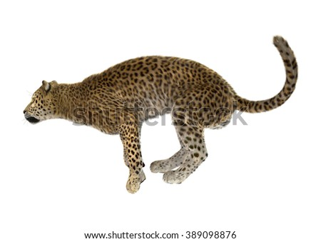 Digital render of a big cat leopard hunting isolated on white background