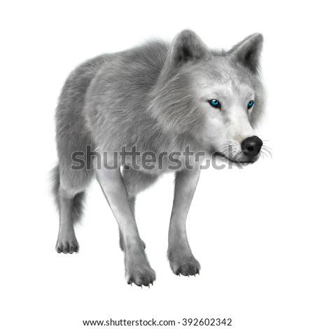 Digital render of a polar wolf isolated on white background