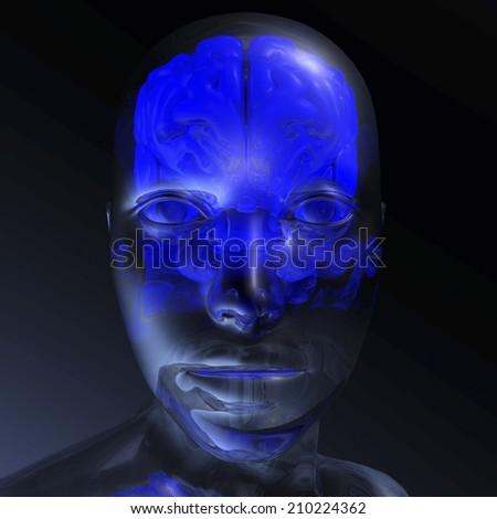 Digital visualization of a human brain - stock photo