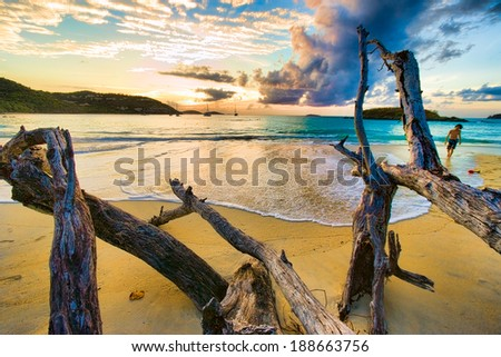 Digitall enhanced image of a boy and driftwood, Cinnamon Bay, St. John, USVI - stock photo