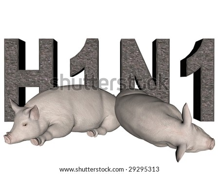 Digitally created word H1N1 with concrete texture and two rendered pigs over white.