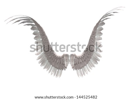 Digitally rendered image of white feathered angel wings. - stock photo