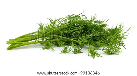 dill isolated on white background - stock photo