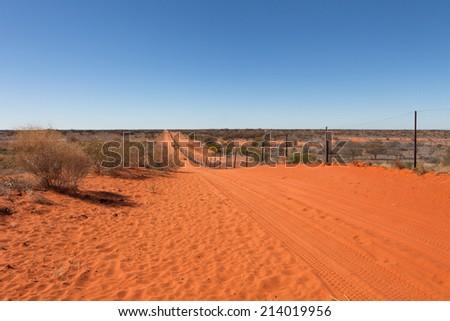 Dingo dog fence in outback Australia. - stock photo