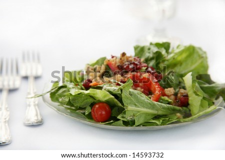 Dinner Salad Setting with Copy Space