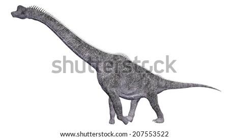 Dinosaur Brachiosaurus isolated on white background Computer generated 3D illustration - stock photo