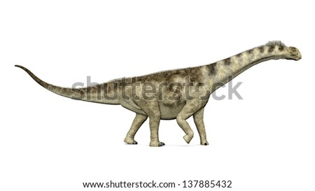 Dinosaur Camarasaurus Computer generated 3D illustration