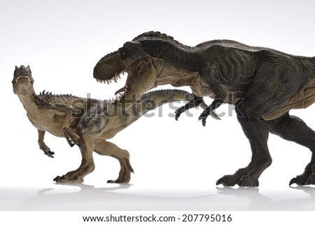 Dinosaur Close Up - Dinosaurs in white Background
