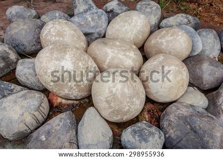 dinosaur egg - stock photo