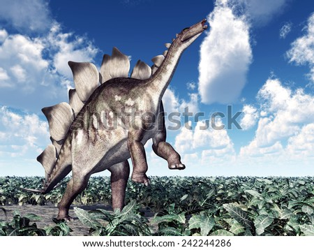 Dinosaur Stegosaurus Computer generated 3D illustration - stock photo