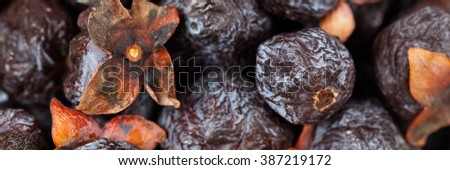 Diospyros Lotus or Wild Persimmon. Macro with shallow dof. Panoramic image. Selective focus. - stock photo