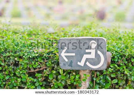 Direction signs for disabled in the park. - stock photo