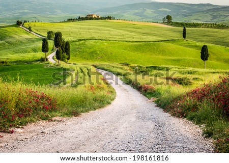 Dirt road and green field in Tuscany - stock photo