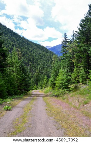 Dirt Road and Mountains in British Columbia, Canada - stock photo