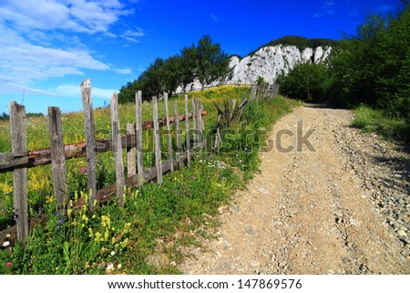 Dirt road and wood fence protecting the green meadow - stock photo