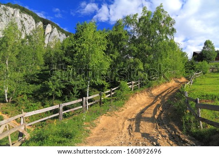 Dirt road climbing a hill covered by vegetation  - stock photo
