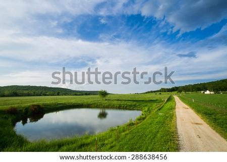 Dirt road in Arkansas through cattle pastures. - stock photo