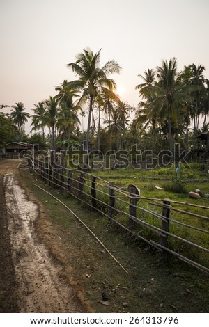 Dirt road in rural of Thailand.