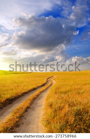 Dirt road in the steppe at dawn. Beautiful summer landscape - stock photo