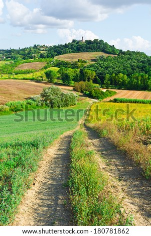 Dirt Road Leading to the Farmhouse in Tuscany, Italy