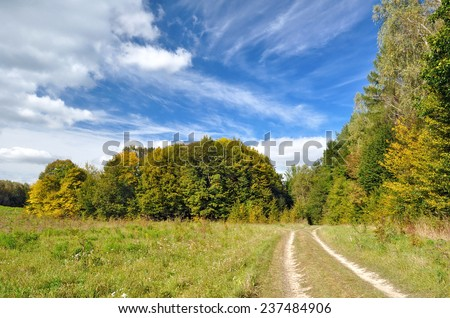 dirt road near the autumn forest - stock photo