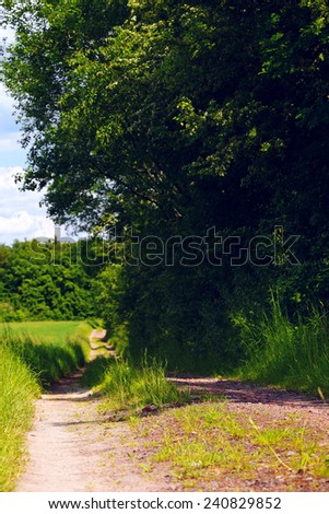 Dirt road on a field in a sunny evening, spring, by Beckingen, Saarland / Germany - stock photo
