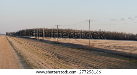Dirt road passing through a prairie field, Manitoba, Canada