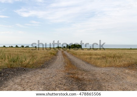 dirt road to the lake Alakol through the field