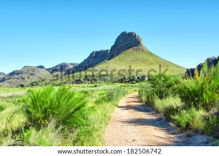 Dirt road towards mountains. Shot in Krakadouw, Cederberg Mountains, near Clanwilliam, Western Cape, South Africa.  - stock photo