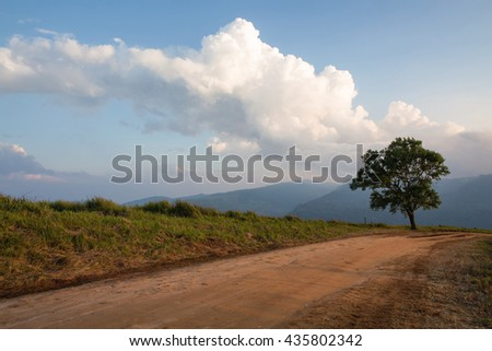 Dirt road track on remote mountain with fog and meadow in the background during the sunset at Phu Lom Lo , Loei, Thailand. - stock photo