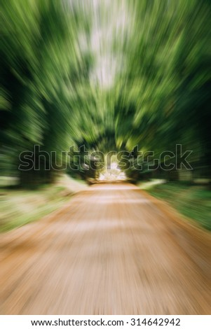Dirt road with bamboo forest on the side.(Motion blur) - stock photo