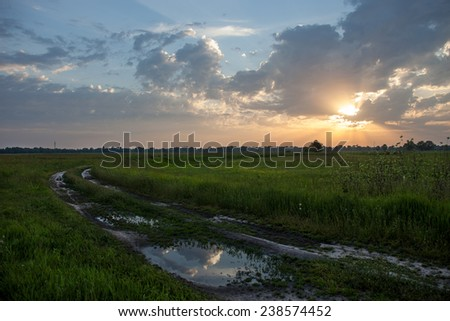 Dirt road with puddles in the green field against the sunset background - stock photo