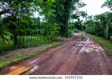 Dirt track through farm in Thailand - stock photo