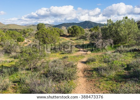 Dirt trail joins Pacific Crest Trail in the Mojave desert wilderness. - stock photo