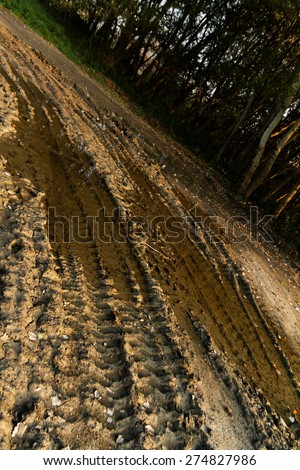 Dirty broken rural road with deep tire tracks - stock photo