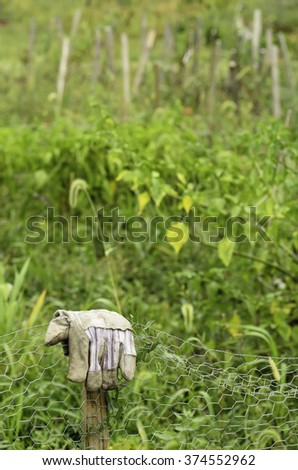 Dirty glove folded over fence post in a community garden, as if to indicate completion of hard work or a quiet sense of fulfillment, summer in northern Illinois (foreground focus) - stock photo