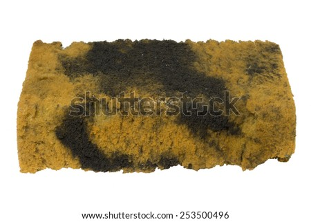 Dirty sponge after washing car isolated on white background - stock photo