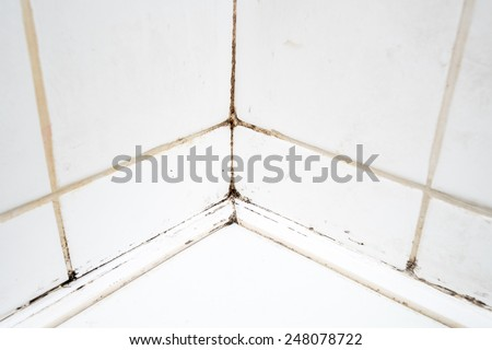 Dirty tiles in a bathroom shower with sealant covered in mould and mildew - stock photo