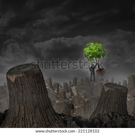 Disaster plan concept as a person standing on a hill in a dead forest with cut trees holding up a healthy green sapling as a symbol of confidence in economic recovery and vision for future growth. - stock photo