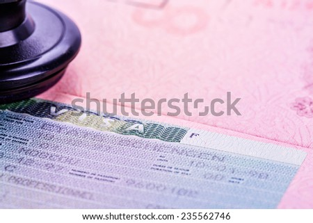 Disclosed passport with visa - stock photo