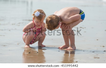 discovering and exploring the beach