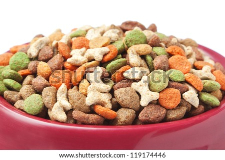Dish cat dog food. Closeup. - stock photo