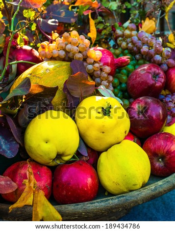 Dish with harvest of assorted autumn fruits