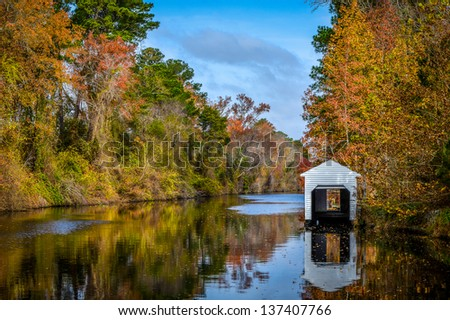 Dismal Swamp Canal - stock photo