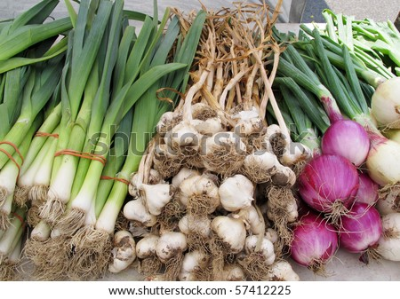 display of fresh green and white onions and garlic