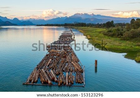 Distant mountains with logs on river. - stock photo