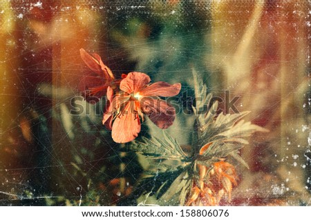 Distressed vintage grungy photo of small pink flowers - stock photo