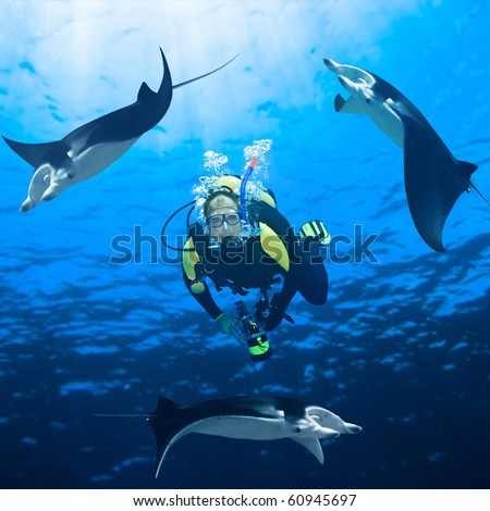 Diver and three manta ray around underwater.