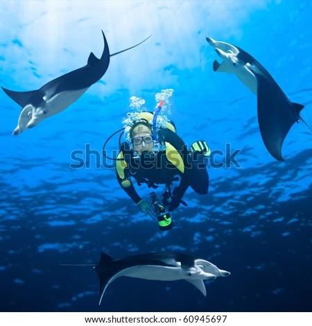 Diver and three manta ray around underwater. - stock photo